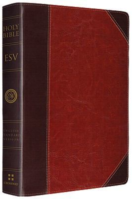 Verse-By-Verse Reference Bible-Timeless 9781433532740