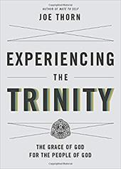 Experiencing the Trinity: The Grace of God for the People of God 22973426