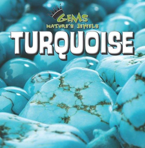 Turquoise 9781433947117