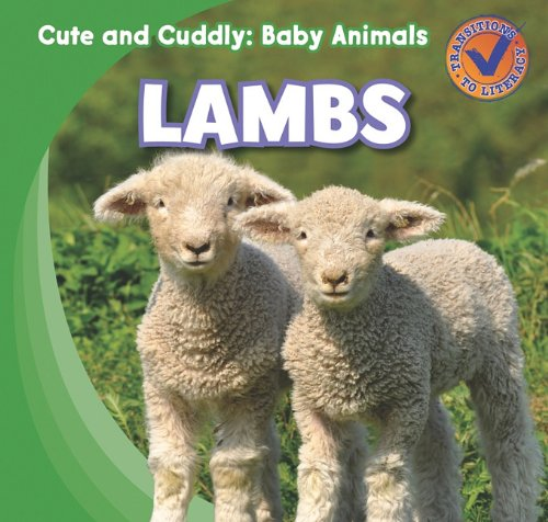 Lambs 9781433955464