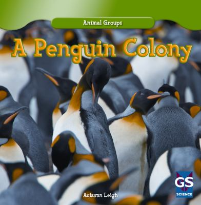 A Penguin Colony (Animal Groups) 9781433982095
