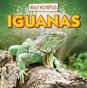 Iguanas (Really Wild Reptiles) 22815036