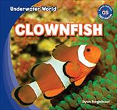 Clownfish (Underwater World) 20870463