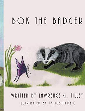 BOK the Badger 9781438952734