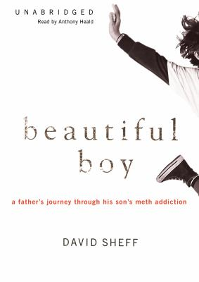 Beautiful Boy: A Father's Journey Through His Son's Meth Addiction 9781433204678