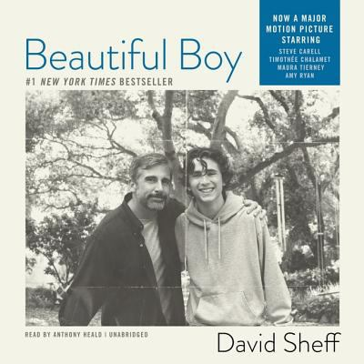 Beautiful Boy: A Father's Journey Through His Son's Meth Addiction 9781433204692