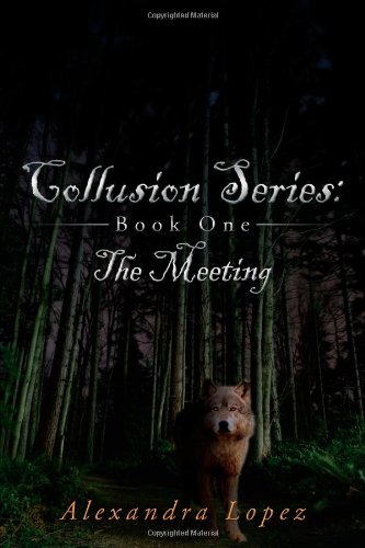Collusion Series: Book One: The Meeting 9781434373885