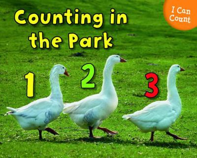 Counting at the Park 9781432966959