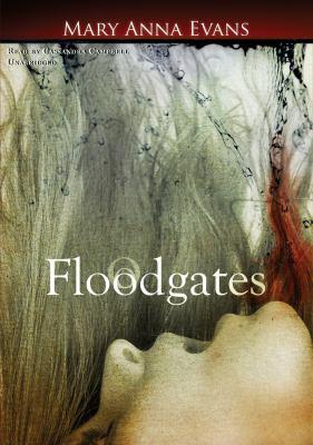 Floodgates 9781433290527