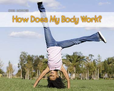How Does My Body Work? 9781432953492