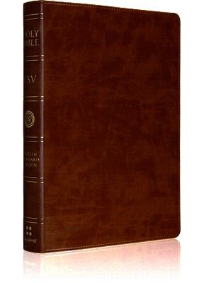Large Print Bible-ESV 9781433502491