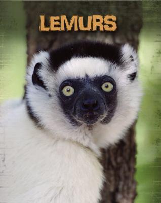 Lemurs 9781432958718