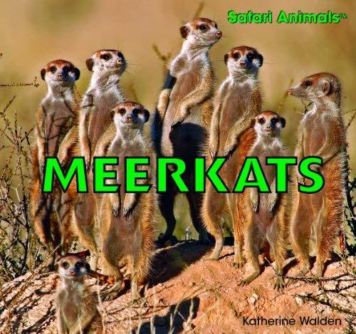 Meerkats 9781435826915
