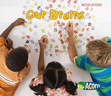 Our Brains 9781432935924
