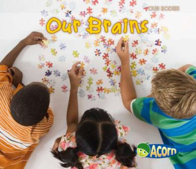 Our Brains 9781432936013