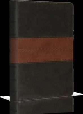 Personal Size Reference Bible-ESV-Trail Design 9781433502361