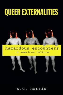 Queer Externalities: Hazardous Encounters in American Culture 9781438427522