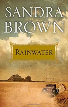 Rainwater 9781439172773