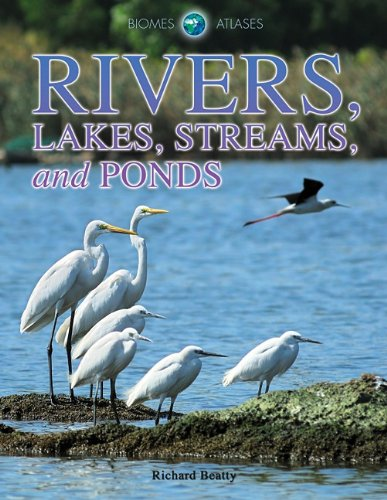 Rivers, Lakes, Streams, and Ponds 9781432941765