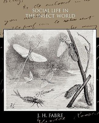 Social Life in the Insect World 9781438532097