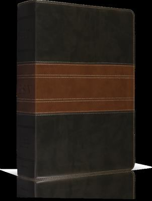 Study Bible-ESV-Trail Design 9781433503931