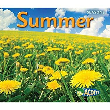 Summer 9781432927349