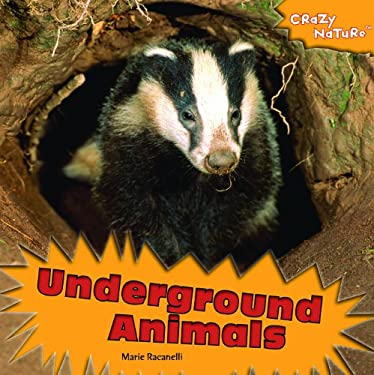 Underground Animals 9781435893849