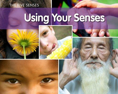 Using Your Senses 9781432954956