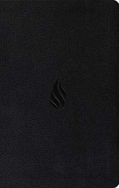 Value Thinline Bible-ESV-Flame