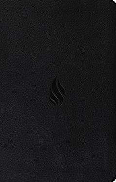 Value Thinline Bible-ESV-Flame 9781433519703