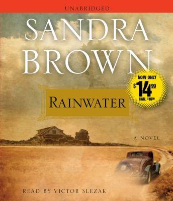Rainwater 9781442345027