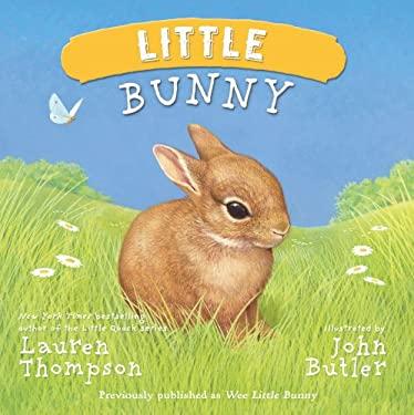 Little Bunny 9781442458512