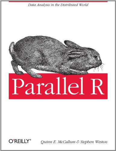 Parallel R 9781449309923