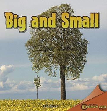 Big and Small 9781448888757