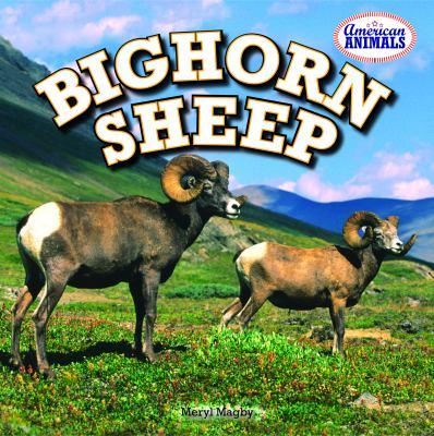 Bighorn Sheep 9781448861811