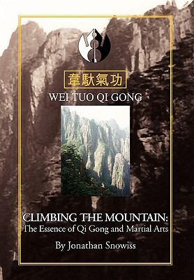 Climbing the Mountain