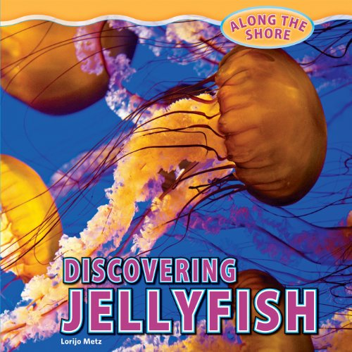 Discovering Jellyfish 9781448849970