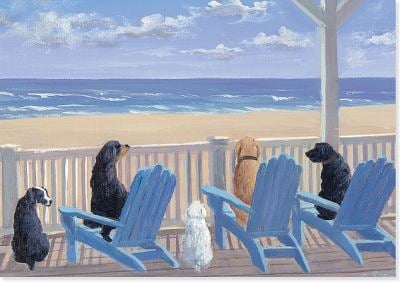 Dogs on Deck Chairs Note Cards [With 15 Designer Envelopes] 9781441303622