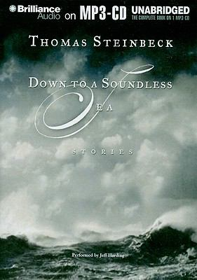 Down to a Soundless Sea: Stories 9781441853592