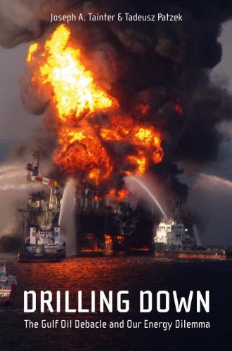 Drilling Down: The Gulf Oil Debacle and Our Energy Dilemma 9781441976765