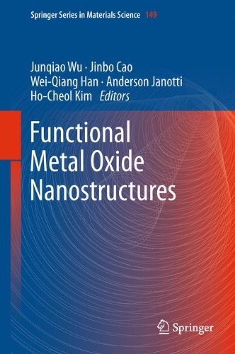 Functional Metal Oxide Nanostructures 9781441999306