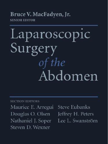 Laparoscopic Surgery of the Abdomen 9781441931269