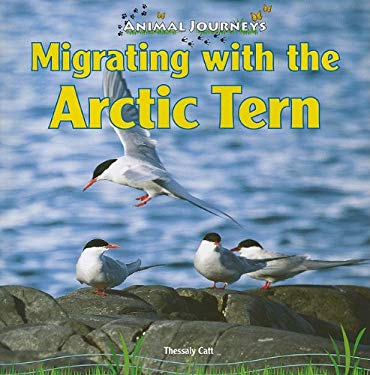Migrating with the Arctic Tern 9781448826681