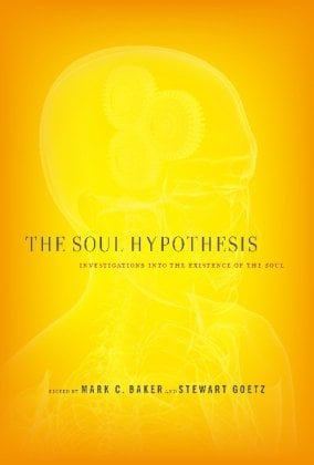 The Soul Hypothesis: Investigations Into the Existence of the Soul 9781441152244