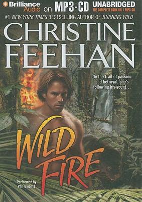 Wild Fire 9781441815316