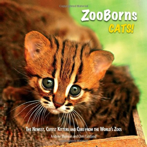 ZooBorns Cats!: The Newest, Cutest Kittens and Cubs from the World's Zoos 9781451651904