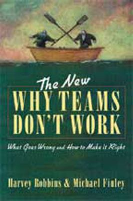 The New Why Teams Don't Work (Large Print 16pt) 9781459609235