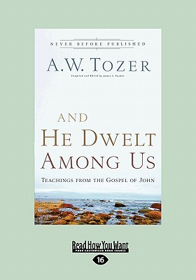 And He Dwelt Among Us: Teachings from the Gospel of John (Large Print 16pt) 9781459606487