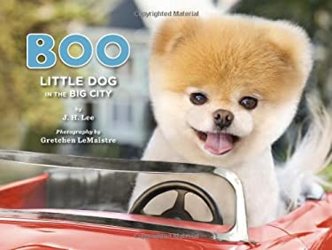 Boo: Little Dog in the Big City 9781452109718