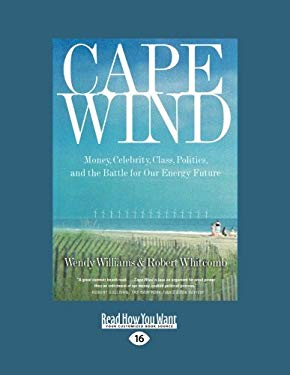 Cape Wind: Money, Celebrity, Class, Politics, and the Battle for Our Energy Future (Easyread Large Edition)